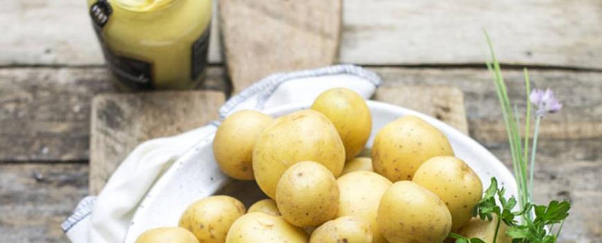 contorni insalata patate a