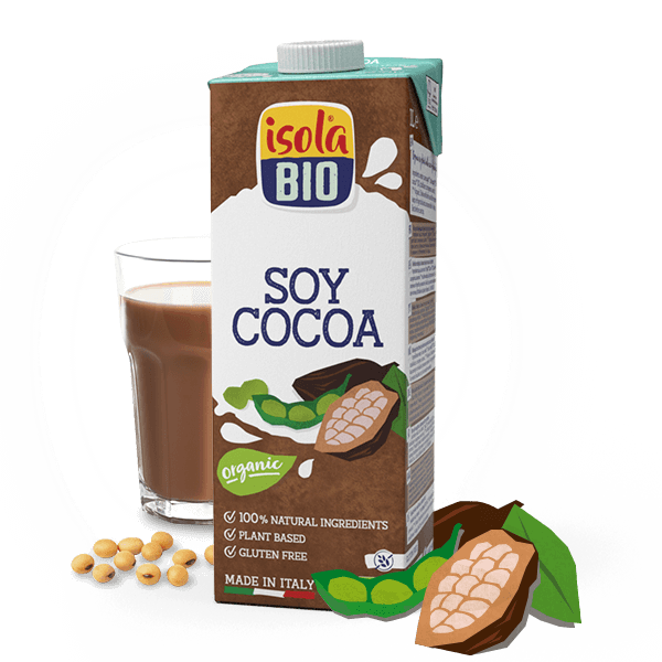 Soy Cocoa Drink